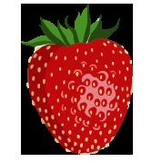 Der Erdbeer Garten in Emleben